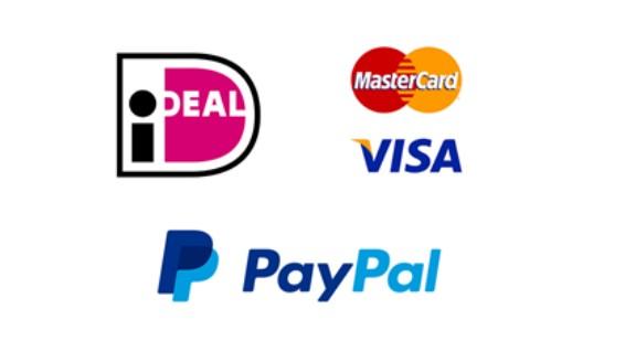 Voorbeelden van betaalmogelijkheden