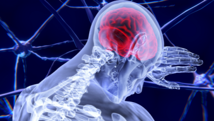 Neuromarketing voorbeelden